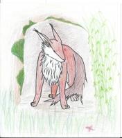 Dessin Dessin renard de Whanka