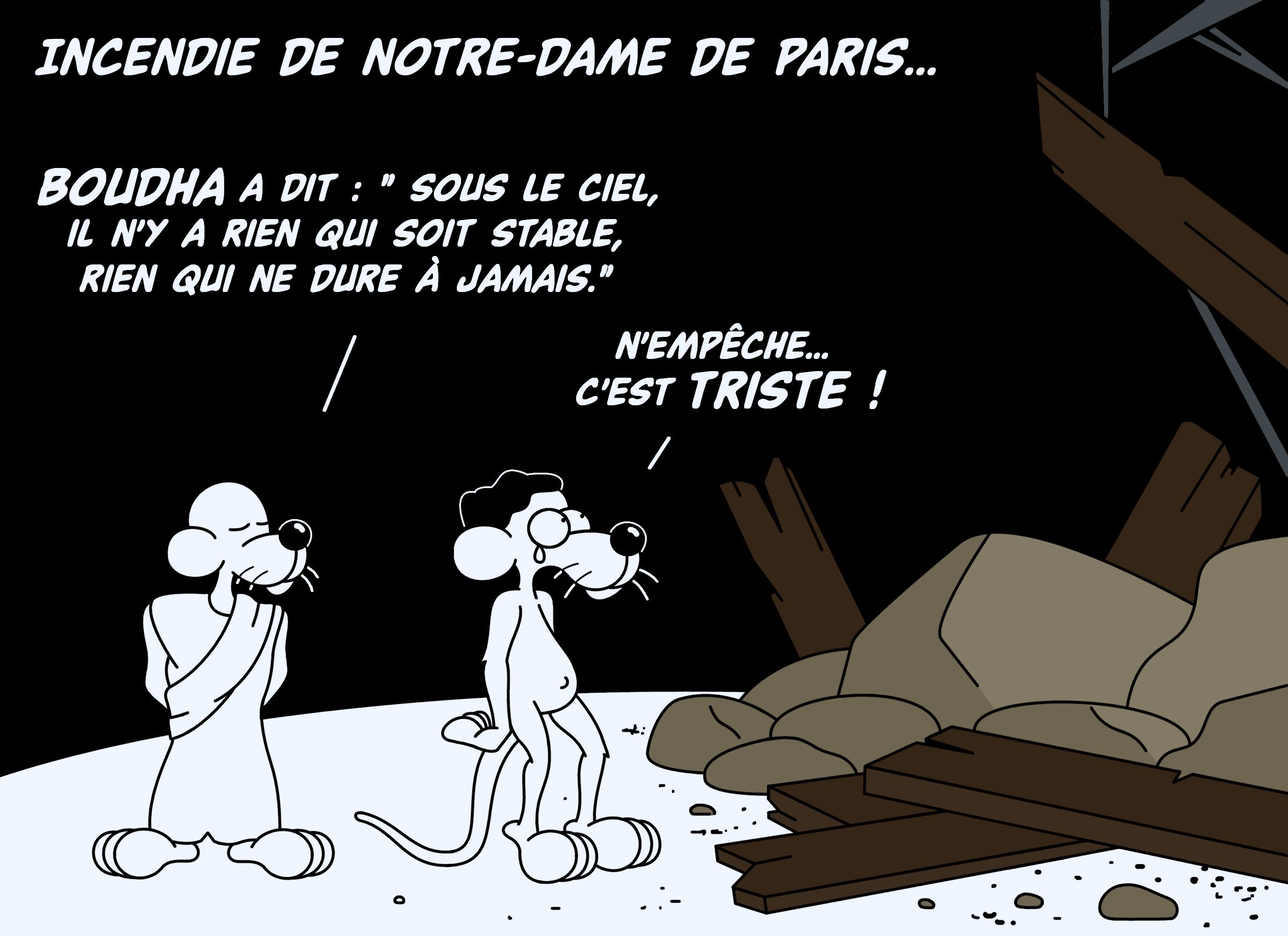 Dessin Incendie de Notre Dame de Paris de Chag