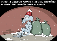 Dessin Vague de froid en France de Chag