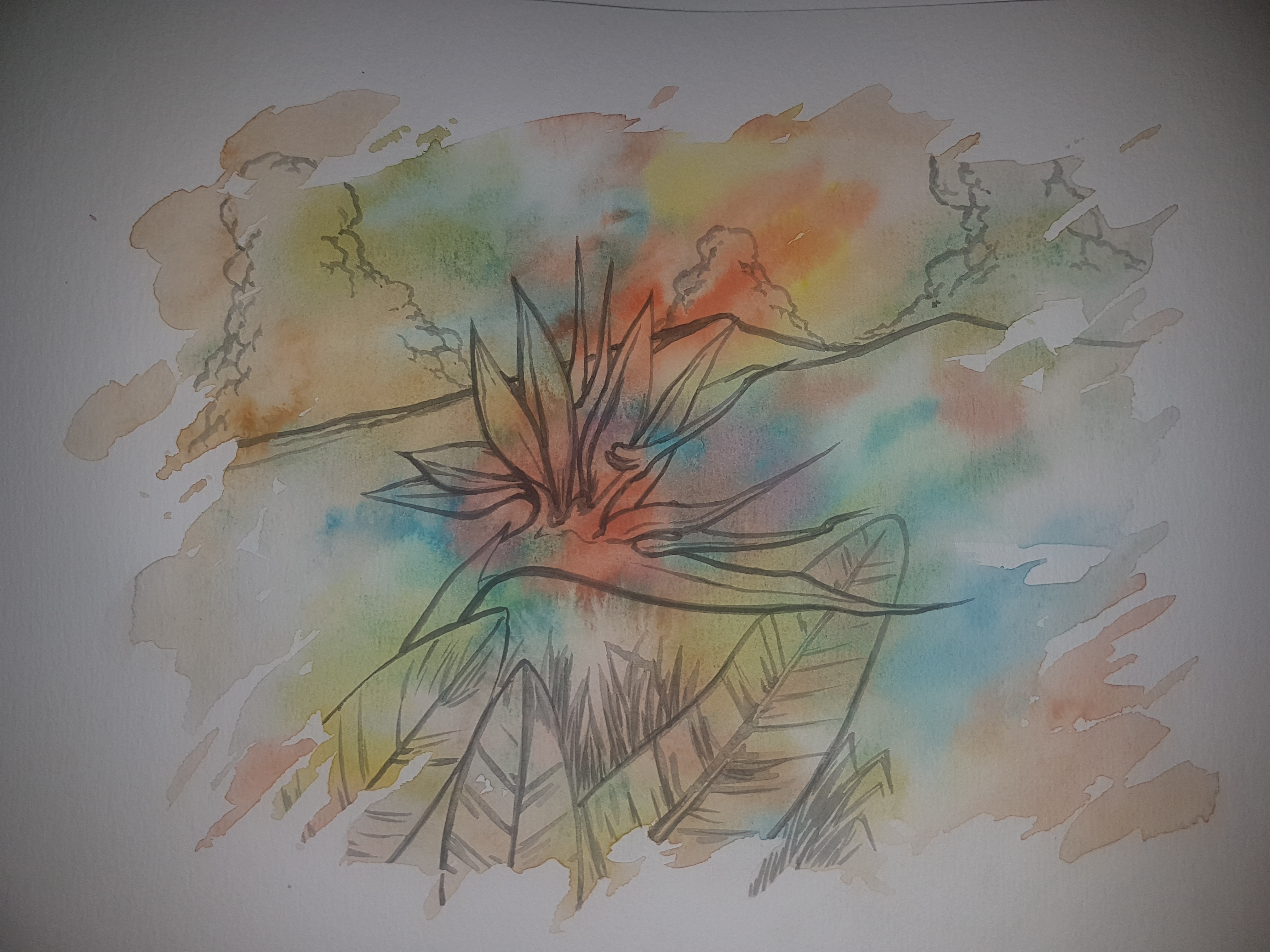 Dessin Fleur de mon île de YANN974