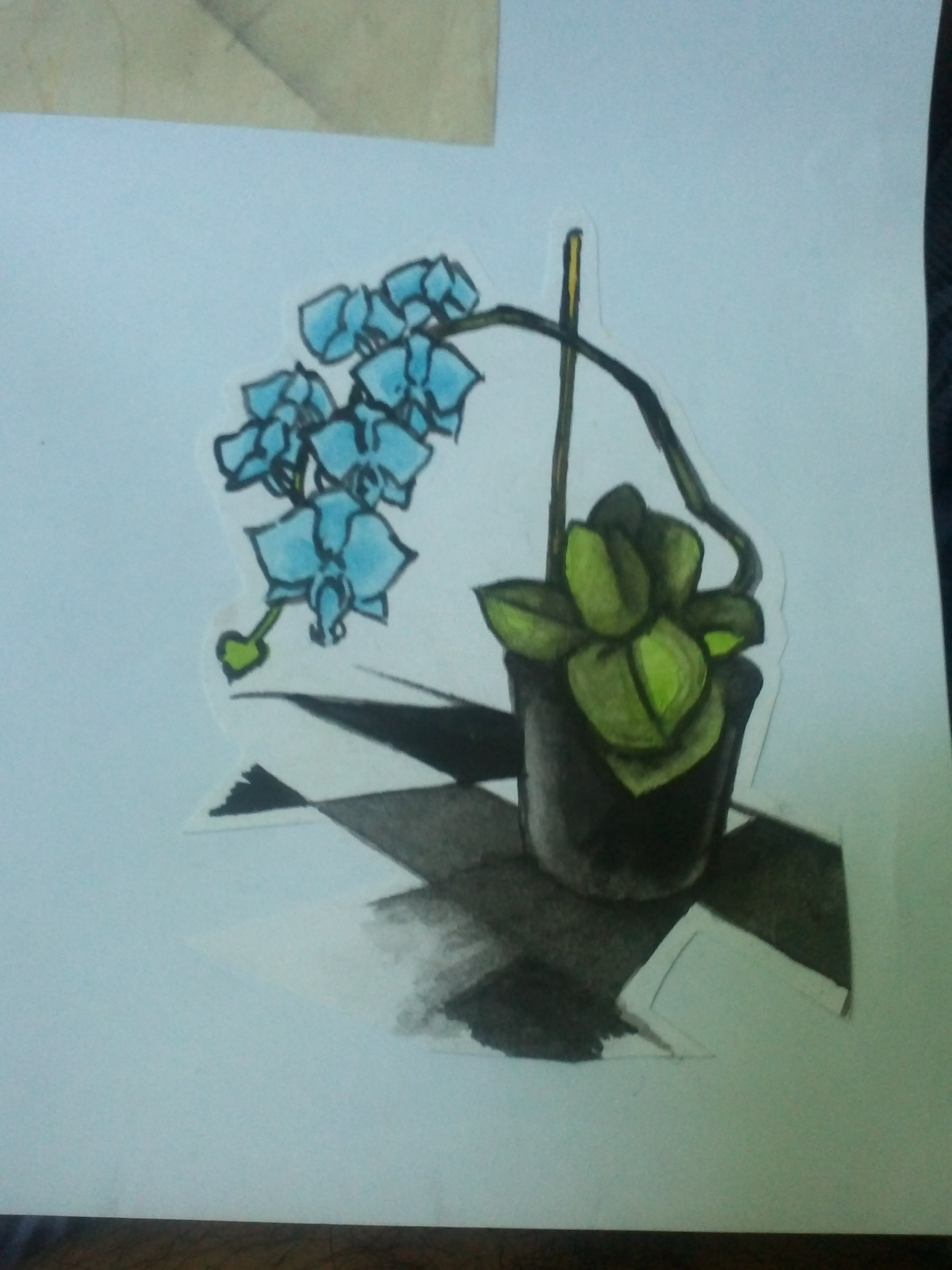 Dessin ORCHIDEES de YANN974
