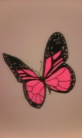 Dessin Papillon rose de Claude16
