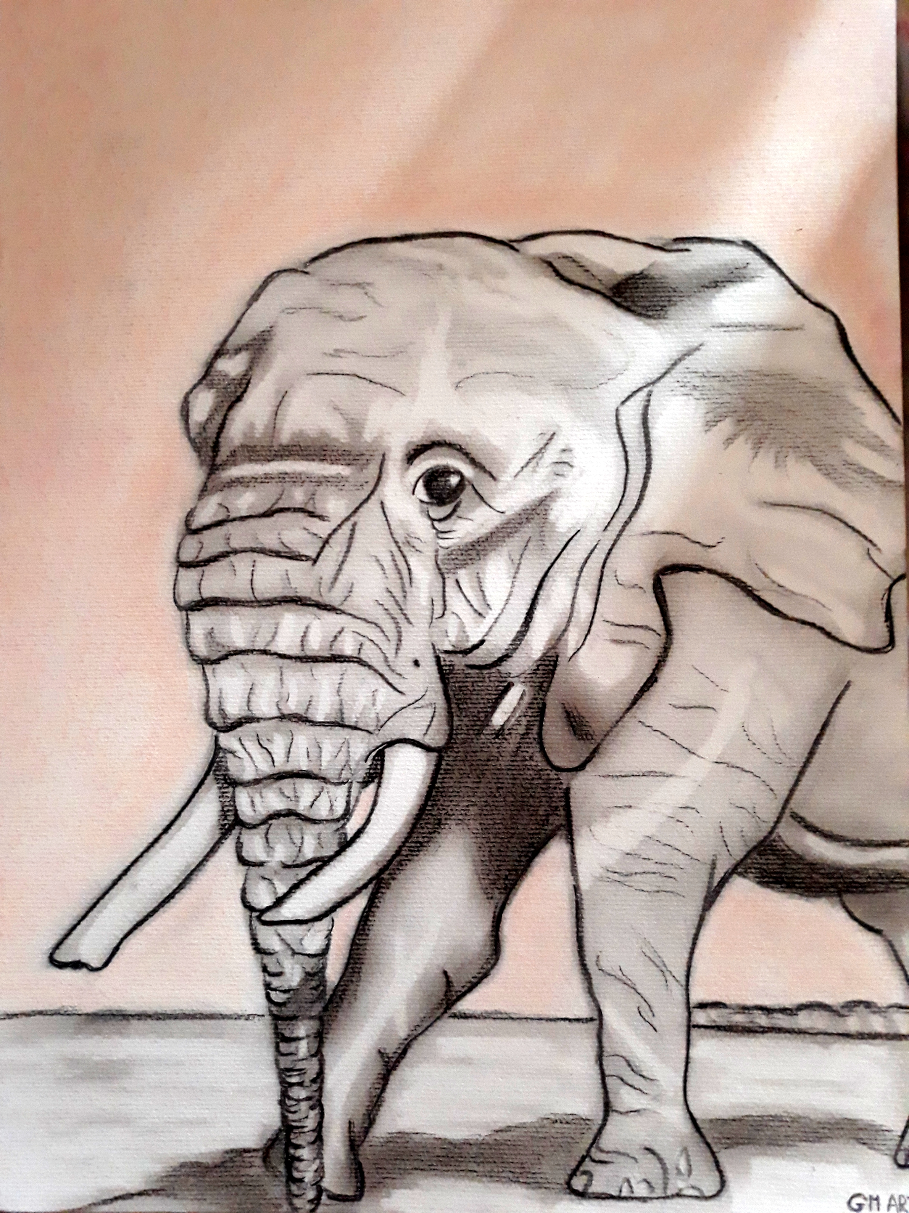 Dessin Dessin elephant de Princesserosia