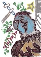 Dessin Oiseau de Princesserosia