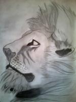 Dessin Portrait lion noir et blanc de Princesserosia