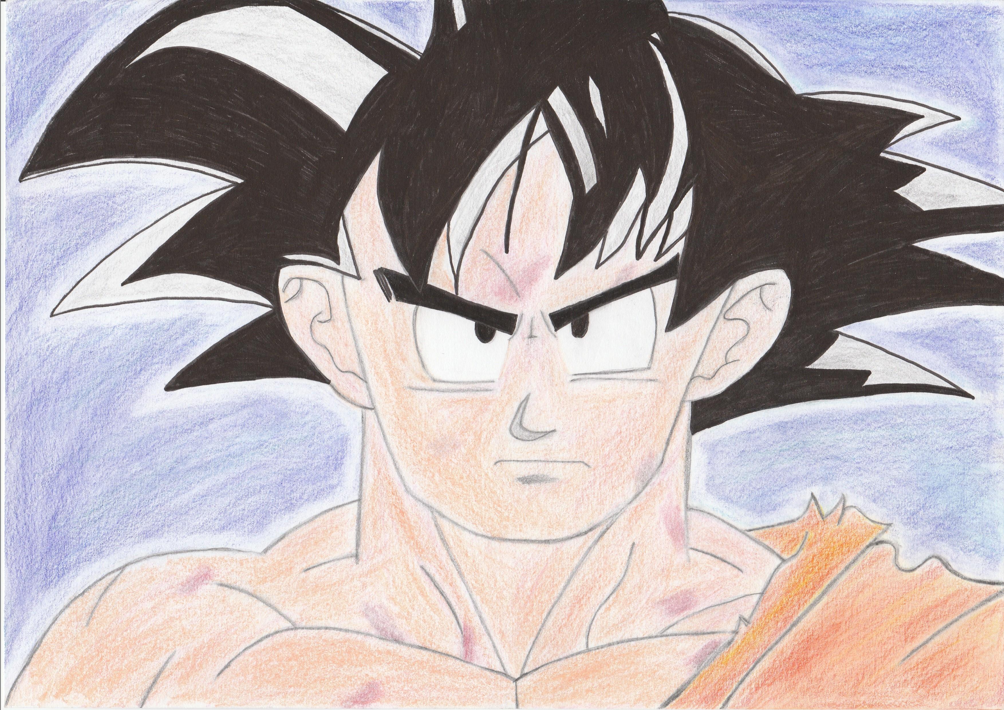 Dessin Son Goku Pencildrawing Fr