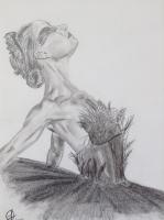 Dessin Black swan de Caribou