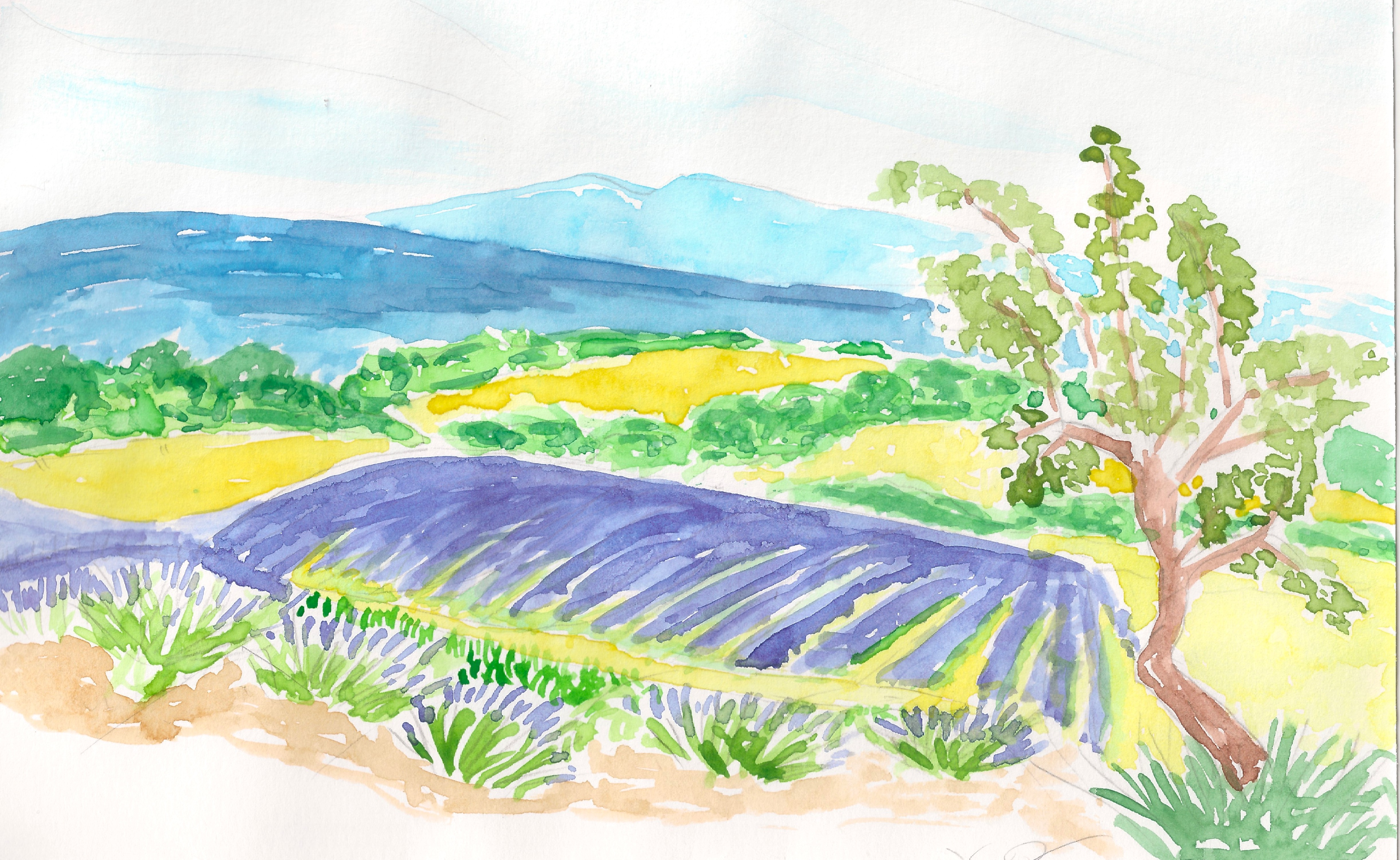 Dessin Drôme provençale de Totoro67