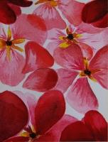 Dessin Tapis de fleurs de Odile