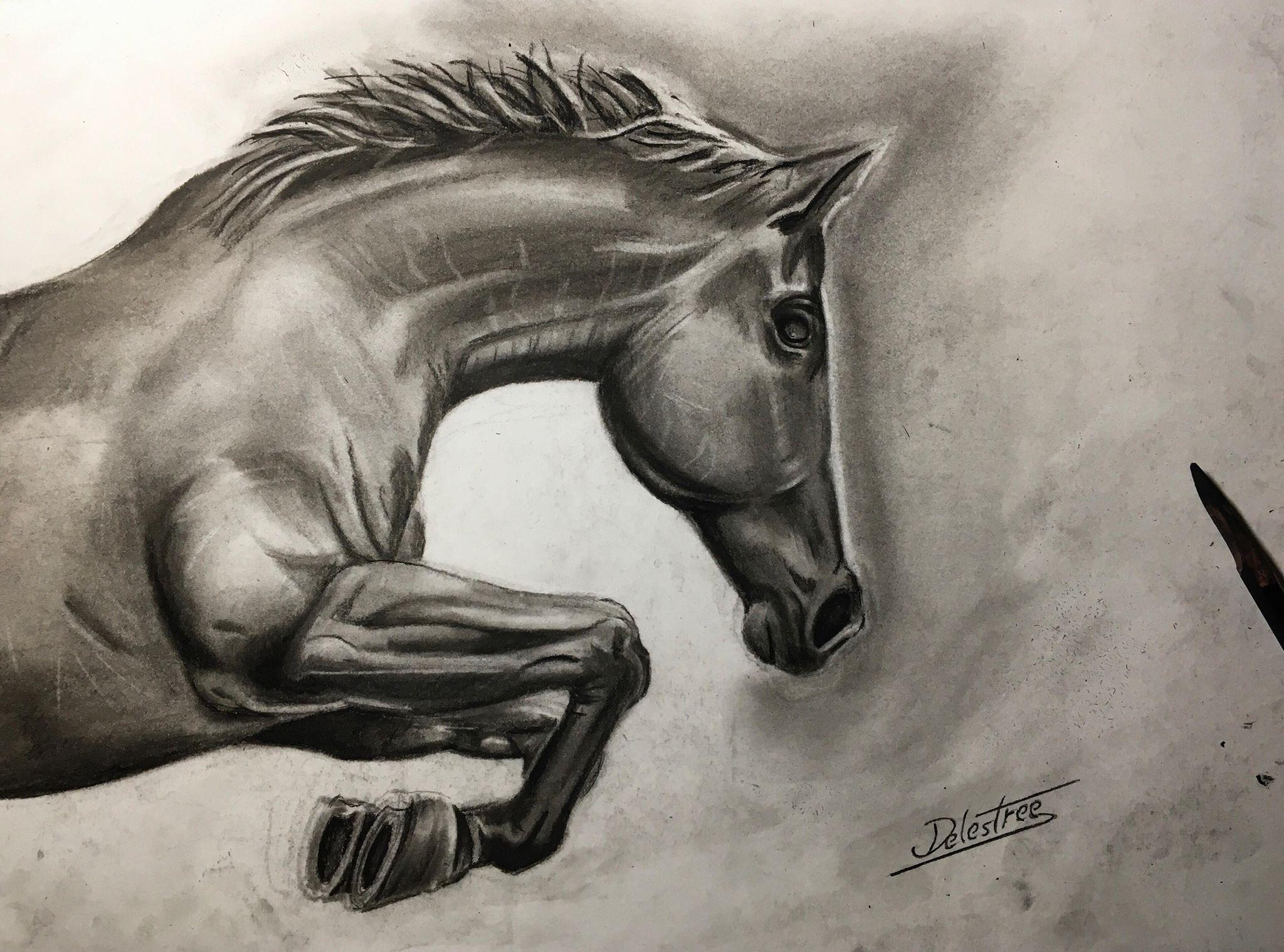 Dessin Horse charcoal de JohannDelestree